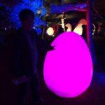「チームラボ 広島城 光の祭」に行ってきた